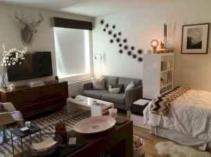 140 Smart Apartment Decorating Ideas (14)