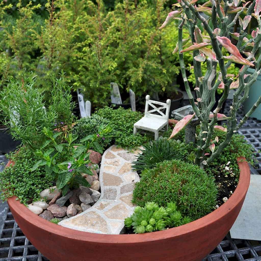 50 Easy DIY Fairy Garden Design Ideas (13)