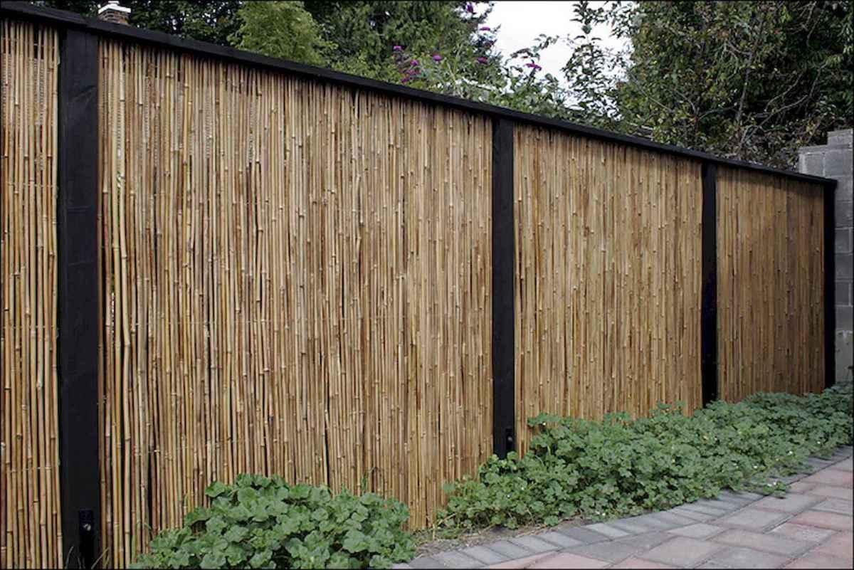 70 Gorgeous Backyard Privacy Fence Decor Ideas on A Budget (19)