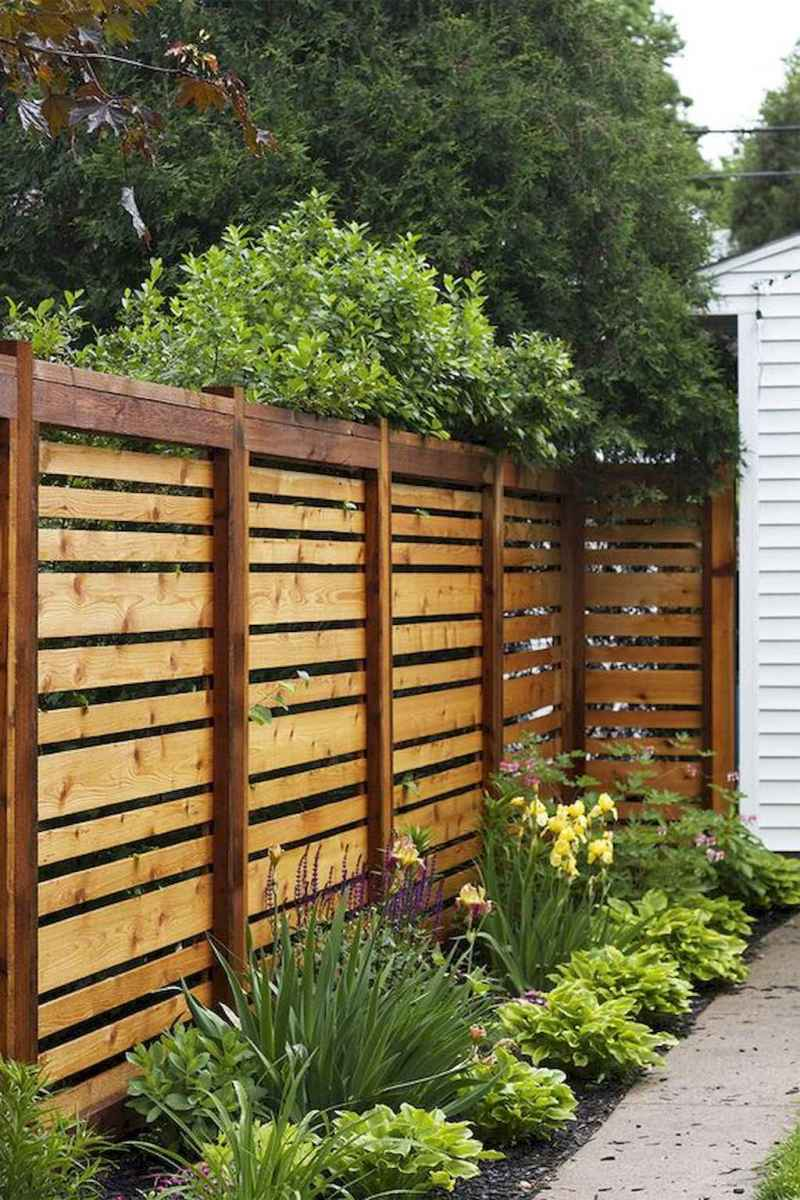 70 Gorgeous Backyard Privacy Fence Decor Ideas on A Budget (2)