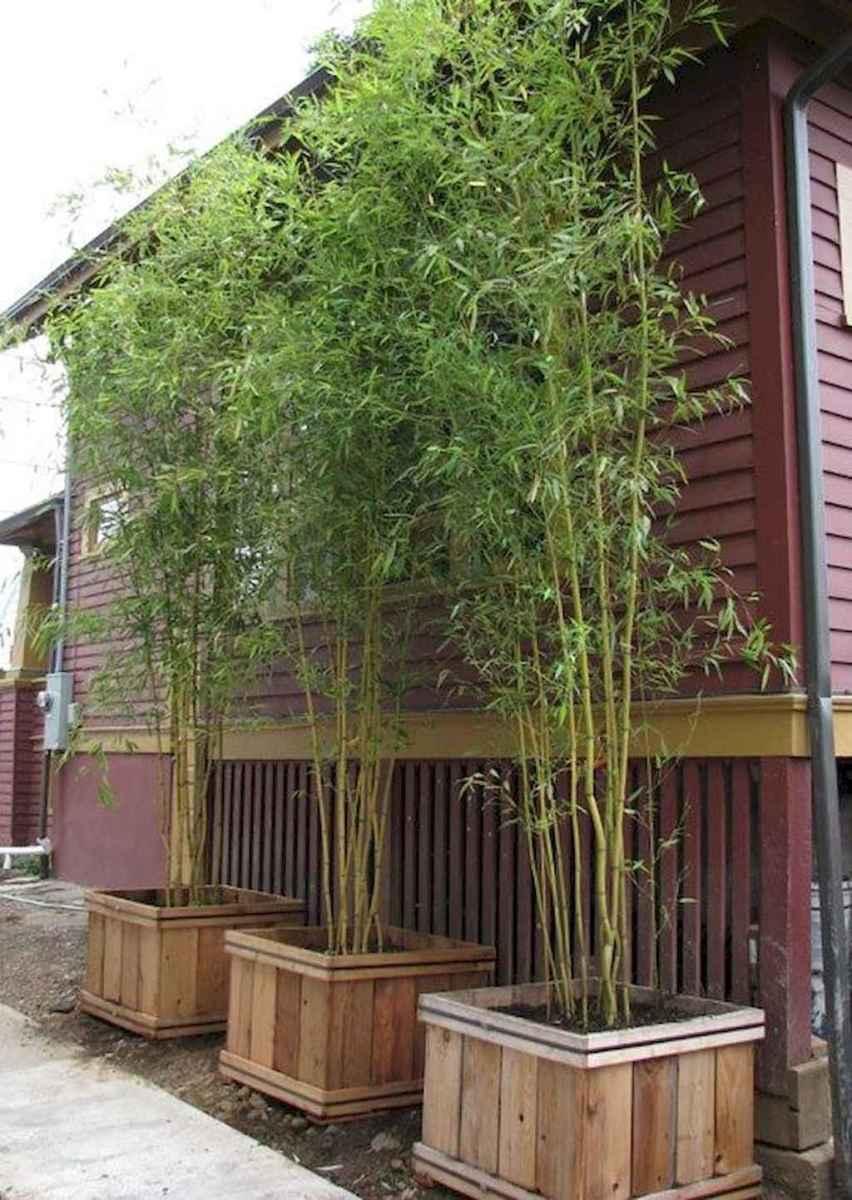 70 Gorgeous Backyard Privacy Fence Decor Ideas on A Budget (50)
