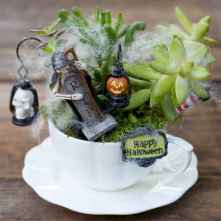 50 DIY Summer Garden Teacup Fairy Garden Ideas (36)