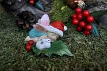 45 Beautiful Christmas Fairy Garden Decor Ideas (41)