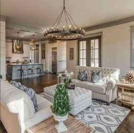 50 Best Rug Living Room Farmhouse Decor Ideas (47)