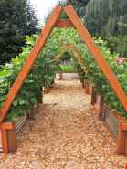 26 Creative Vegetable Garden Ideas And Decorations (14)