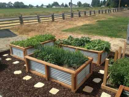26 Creative Vegetable Garden Ideas And Decorations (18)