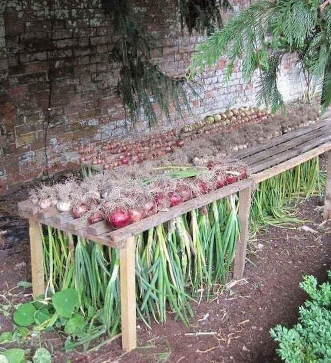 10 Creative Vegetable Garden Ideas: 26 Creative Vegetable Garden Ideas And Decorations (21