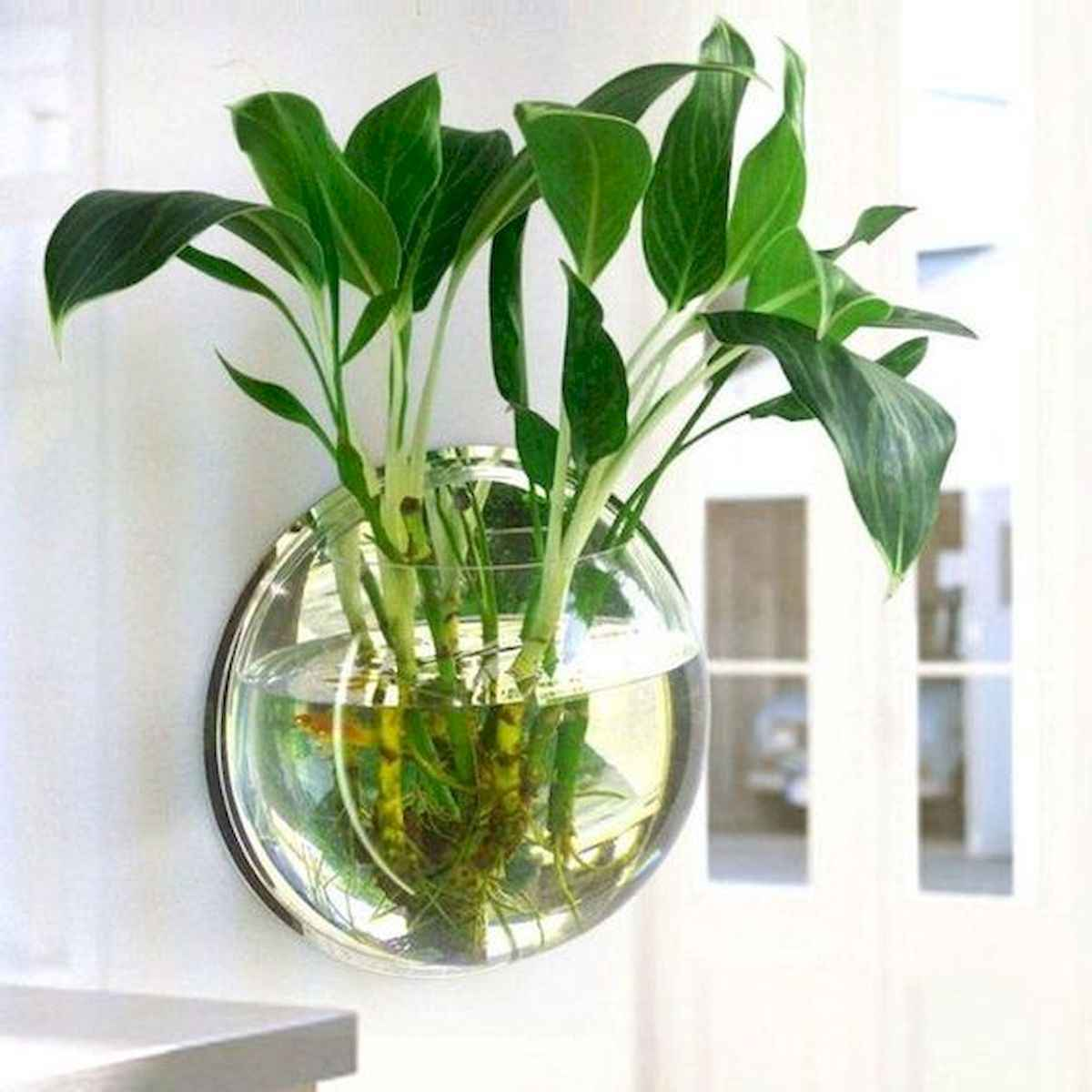 40 Easy To Try Hydroponic Gardening For Beginners Design Ideas And Remodel (13)