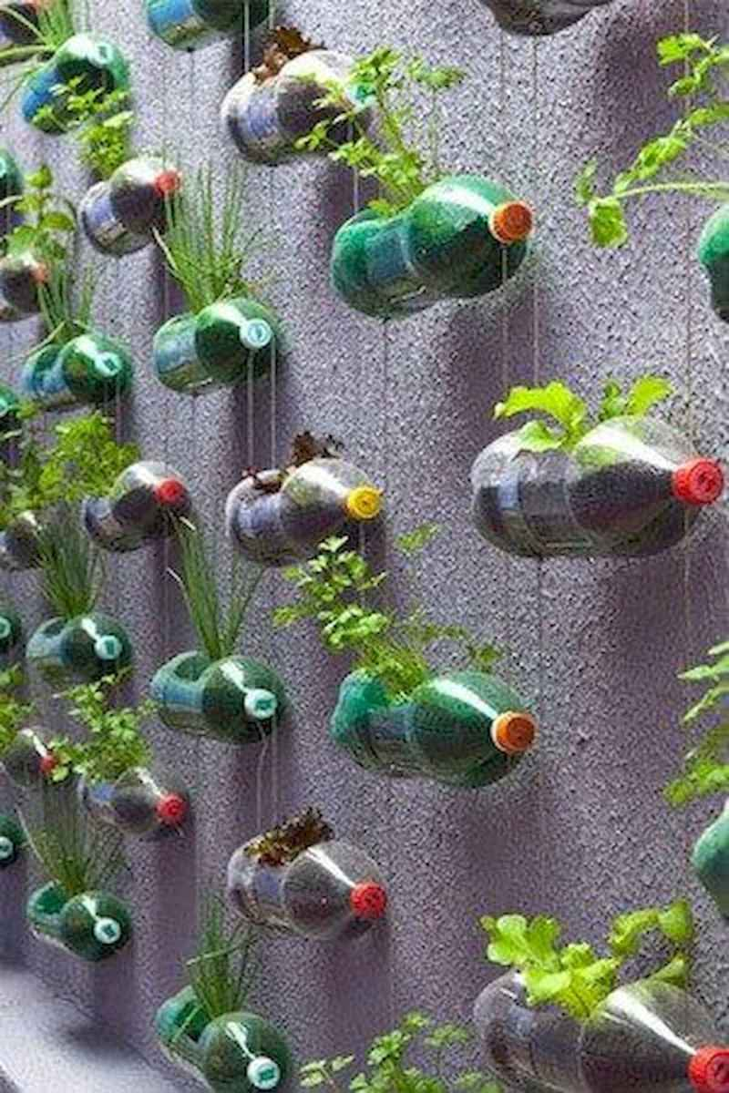 40 Easy To Try Hydroponic Gardening For Beginners Design Ideas And Remodel (19)