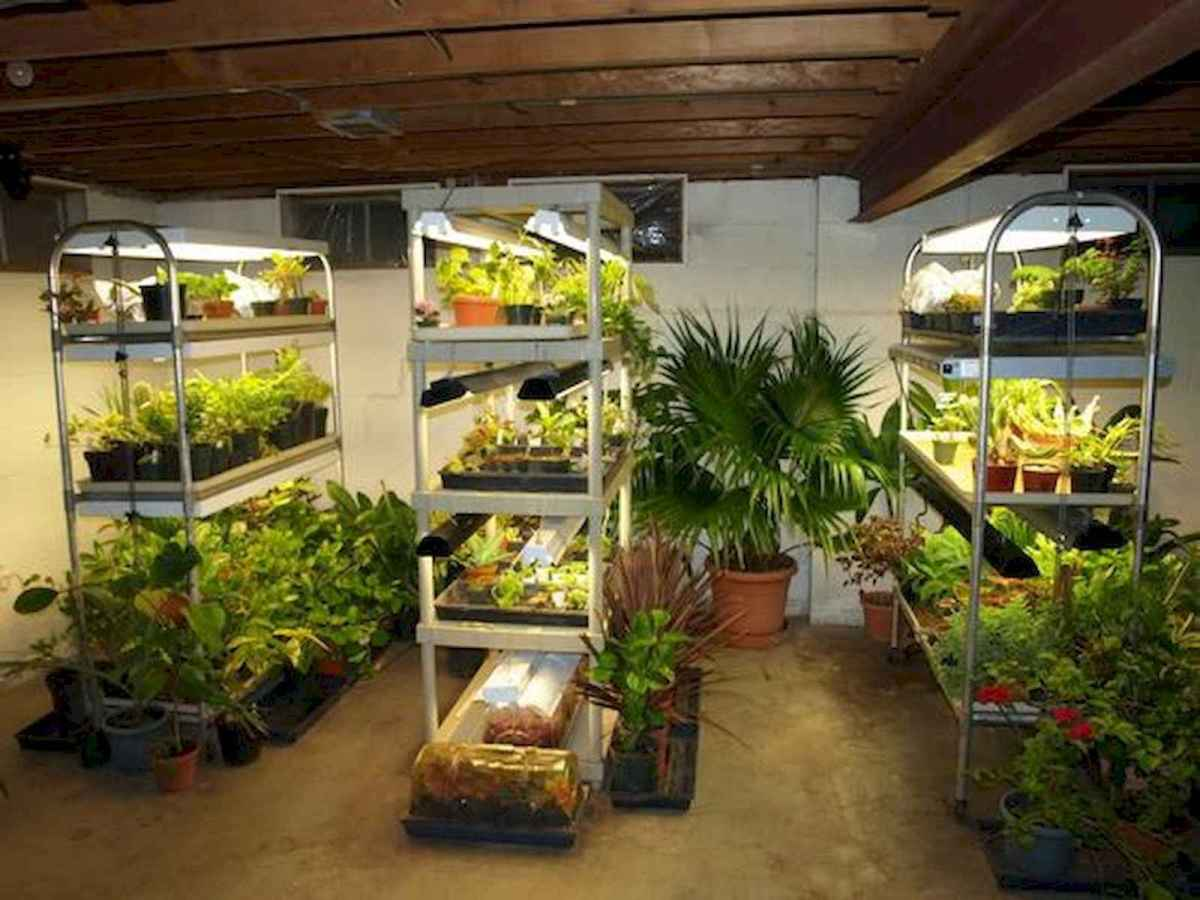 40 Easy To Try Hydroponic Gardening For Beginners Design Ideas And Remodel (2)