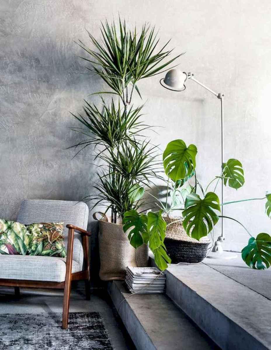 50 Best Indoor Garden For Apartment Design Ideas And Remodel (25)