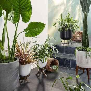 50 Best Indoor Garden For Apartment Design Ideas And Remodel (45)