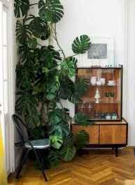 50 Best Indoor Garden For Apartment Design Ideas And Remodel (6)