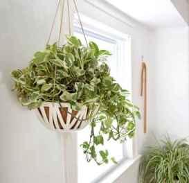 50 Best Indoor Garden For Apartment Design Ideas And Remodel (7)