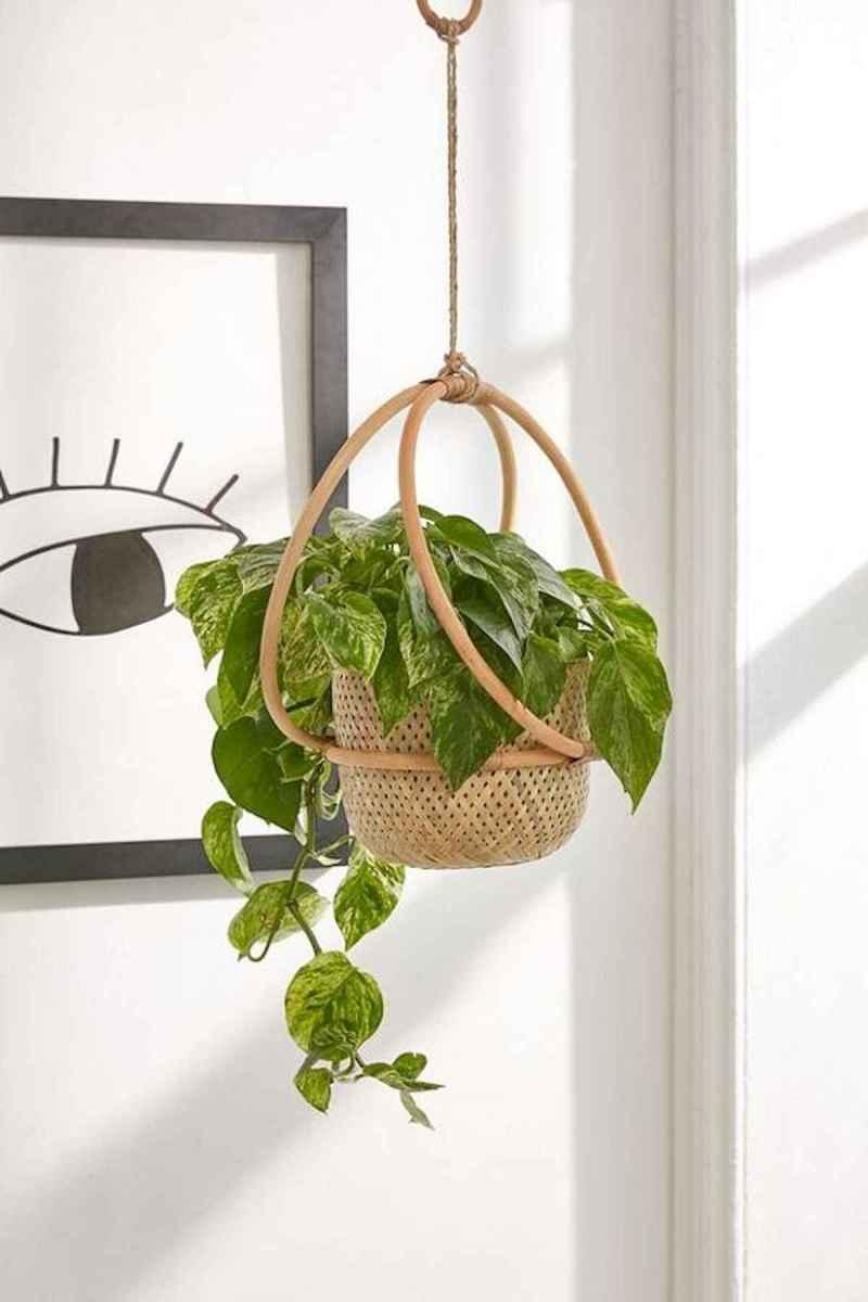 50 Best Indoor Garden For Apartment Design Ideas And Remodel (9)