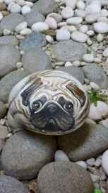 40 Awesome DIY Projects Painted Rocks Animals Dogs for Summer Ideas (18)