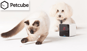 Get Your Petcube Here!