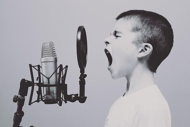Selbstausdruck durch Sprache - Free-Photos/Pixabay