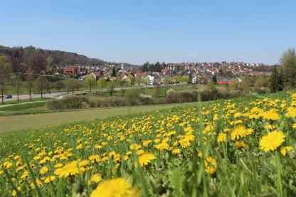 1500-Aidlingen-April