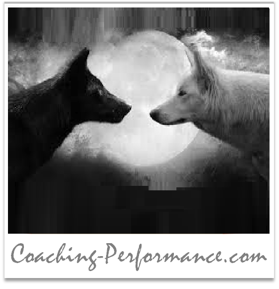 #Métaphore – 14 : Le combat des 2 loups ?