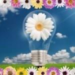 <h1>Entrepreneur Ideas</h1>