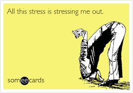stress meme