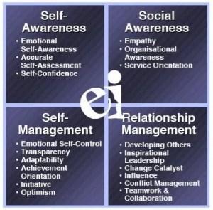 Emotional Intelligence quadrant
