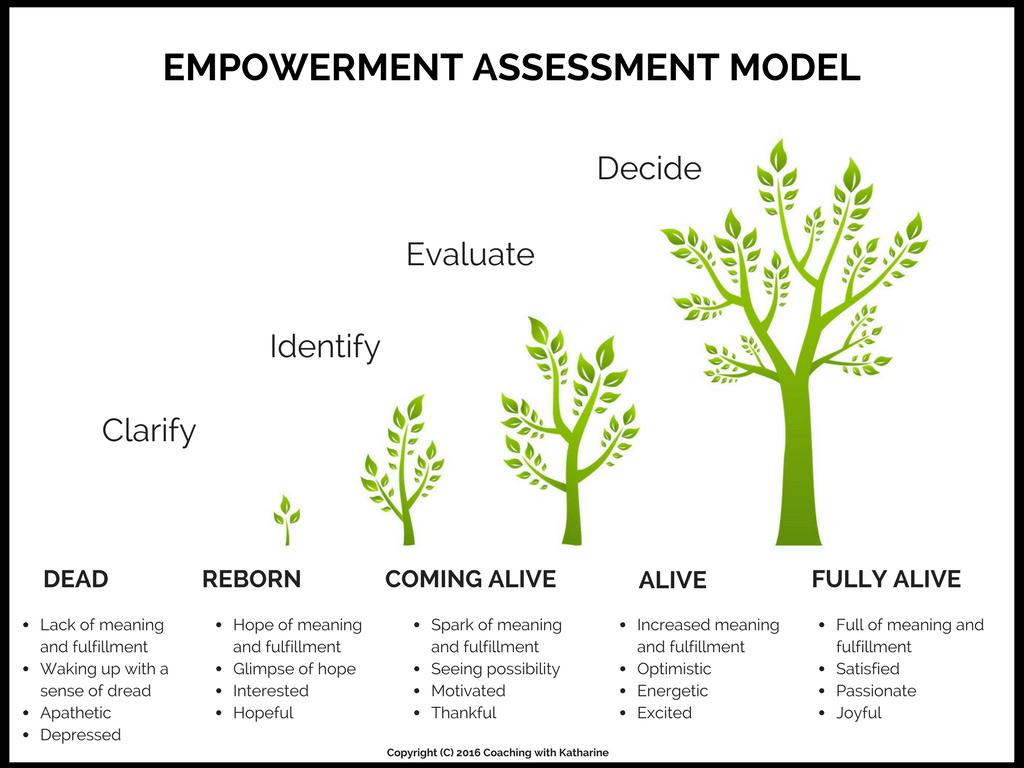 Empowerment Assessment Model - Katharine Lavenhagen