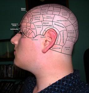 danphrenology