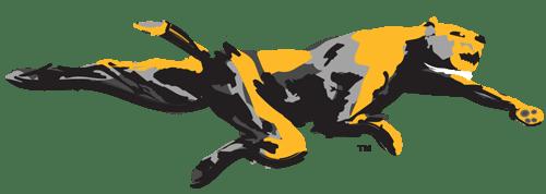 The Wildcat Multi Spread Run Offense