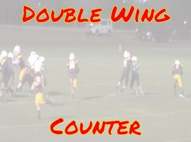 Double Wing Counter picture