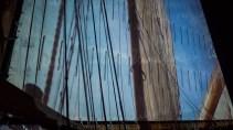 timberwind-7
