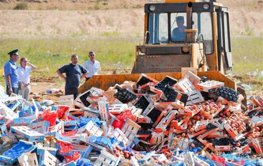 A worker uses a bulldozer to crush crates of peaches outside Novozybkov. - / AFP - Getty Images