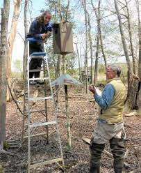 Two people cleaning a wood duck box.
