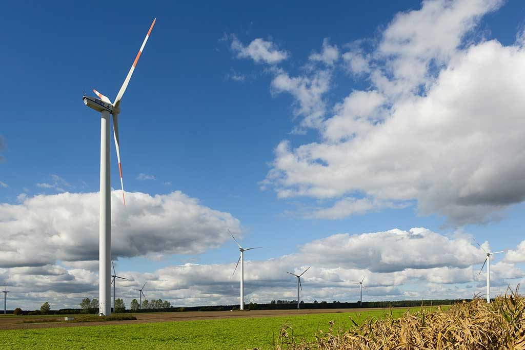Wind turbines in Lusatia