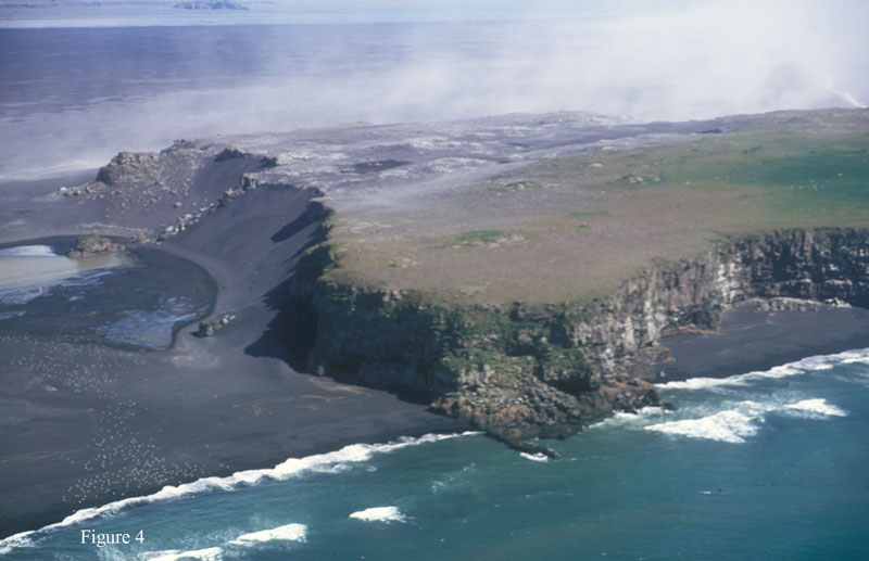 A forbidding shoreline in South-Central Iceland