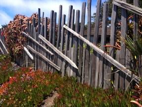 fence at Carmel Point