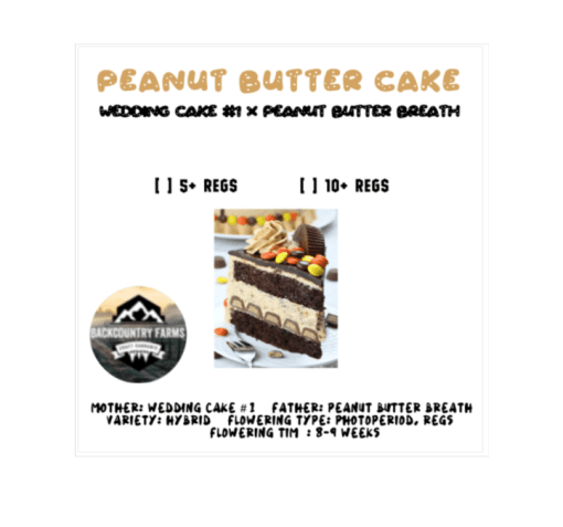 Peanut Butter Cake from Back Country Farms for Coastal Mary