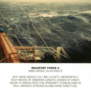 Beaufort_scale_8