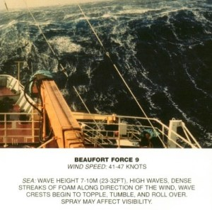 Beaufort_scale_9