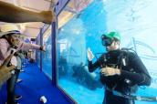 DIBS 2020 Dubai International Boat Show boatshow 2