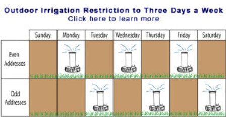 Irrigation Schedule