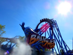 Banshee Ride Review