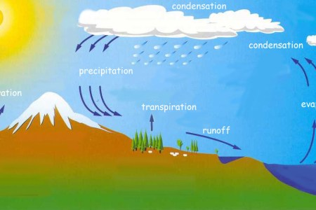 What is water cycle 4k pictures 4k pictures full hq wallpaper diagram how else does water exist where does the water cycle short essay on distribution of evaporation water cycle song barbie version science showme ccuart Choice Image
