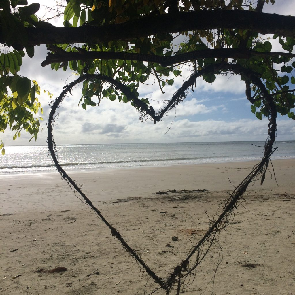 We LOVE Daintree with kids