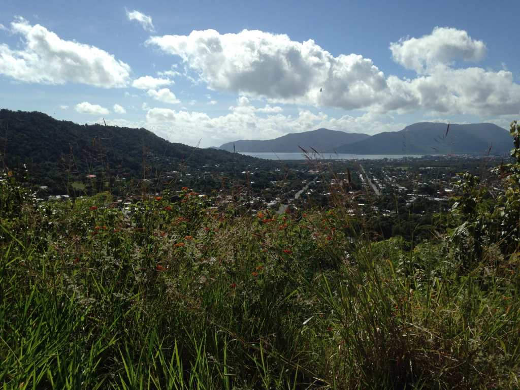 A beautiful view over Cairns on a dog friendly walking track