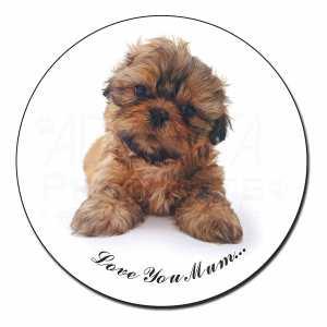 Cute Shih-Tzu Fridge Magnet