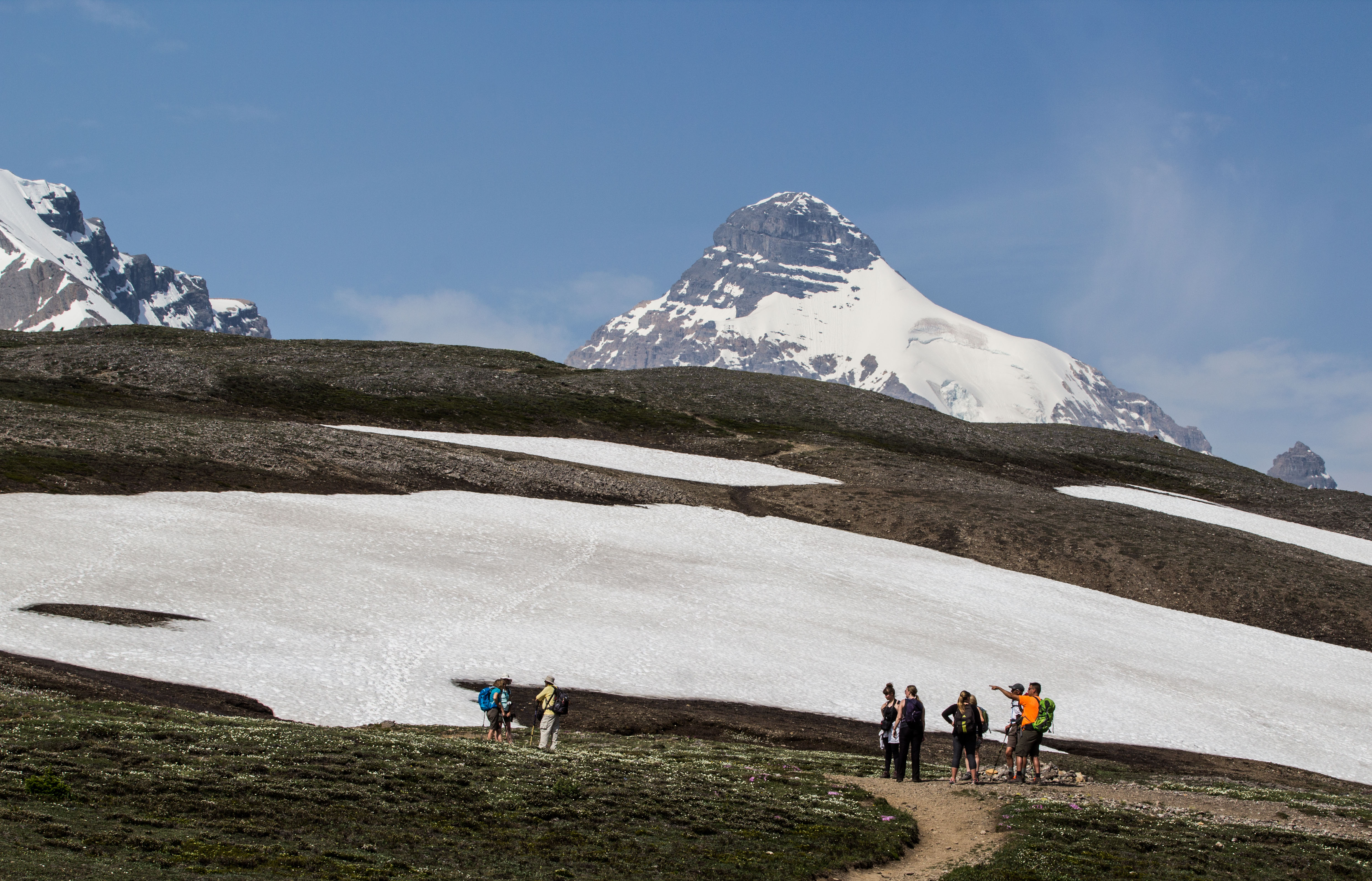 A group of birders missing the glacier for the birds. Dawn Page / CoastsideSlacking