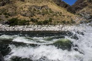 20170712 - snake river jetboat-IMG_7609