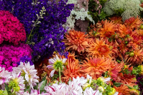Fresh flowers from Fly Girl Farm at the Coastside Farmer's Market in Pacifica, CA. Dawn Page / CoastsideSlacking